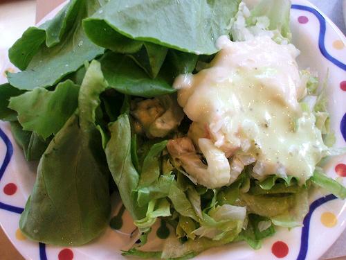 サラダ菜と惣菜など