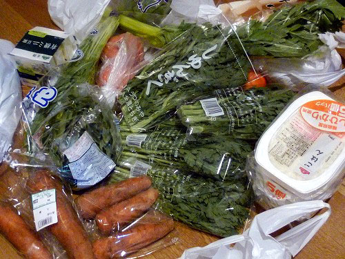 買いまわった野菜