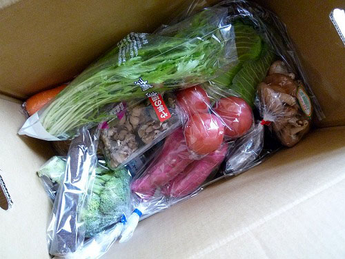 15品野菜セット