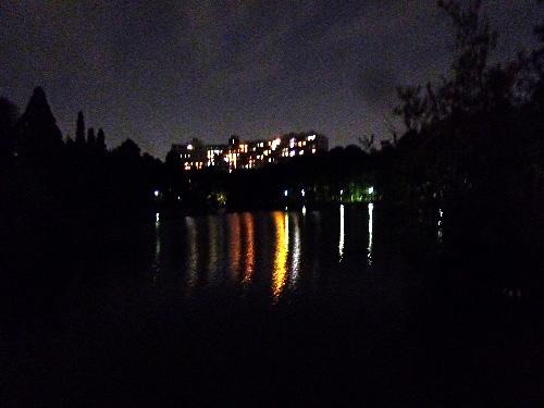 建物の光が映りこんだ池