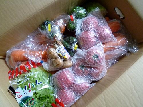 高原マーケットかようの野菜